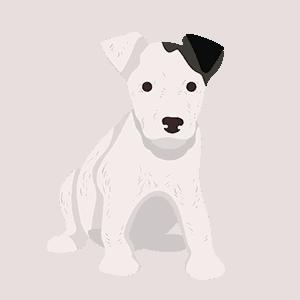 ws-puppy